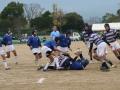 福岡県新人大会ラグビー_ヤングウェーブ北九州_ラグビースクール026.JPG