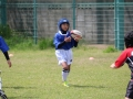 youngwave_kitakyusyu_rugby_school_chikuhokouryu2016062.JPG