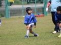 youngwave_kitakyusyu_rugby_school_chikuhokouryu2016084.JPG