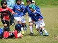 youngwave_kitakyusyu_rugby_school_chikuhokouryu2016087.JPG
