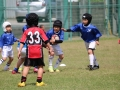 youngwave_kitakyusyu_rugby_school_chikuhokouryu2016088.JPG