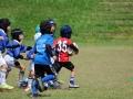 youngwave_kitakyusyu_rugby_school_chikuhokouryu2016089.JPG