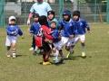 youngwave_kitakyusyu_rugby_school_chikuhokouryu2016096.JPG