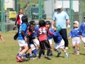 youngwave_kitakyusyu_rugby_school_chikuhokouryu2016099.JPG
