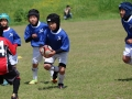 youngwave_kitakyusyu_rugby_school_chikuhokouryu2016101.JPG