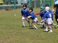 youngwave_kitakyusyu_rugby_school_chikuhokouryu2016103.JPG