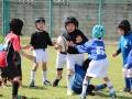 youngwave_kitakyusyu_rugby_school_chikuhokouryu2016140.JPG