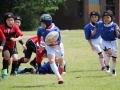 youngwave_kitakyusyu_rugby_school_chikuhokouryu2016010.JPG