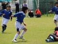 youngwave_kitakyusyu_rugby_school_chikuhokouryu2016018.JPG
