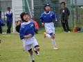 youngwave_kitakyusyu_rugby_school_chikuhokouryu2016022.JPG