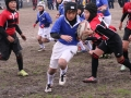 大東建託杯ラグビー祭2015_12月13日_ヤングウェーブ北九州_ミニラグビーAチーム014.JPG
