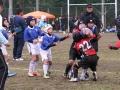 大東建託杯ラグビー祭2015_12月13日_ヤングウェーブ北九州_ミニラグビーBチーム050.JPG