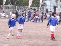 大東建託杯ラグビー祭2015_12月13日_ヤングウェーブ北九州_ミニラグビーBチーム046.JPG
