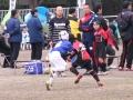 大東建託杯ラグビー祭2015_12月13日_ヤングウェーブ北九州_ミニラグビーBチーム067.JPG