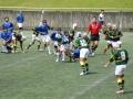 中学生福岡県大会 ラグビー ヤングウェーブ北九州DSC_0612.JPG