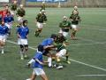 中学生福岡県大会 ラグビー ヤングウェーブ北九州DSC_0619.JPG