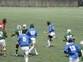 中学生福岡県大会 ラグビー ヤングウェーブ北九州DSC_0652.JPG