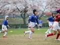 youngwave_kitakyusyu_rugby_school_kasugahai2016030.JPG