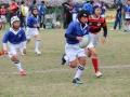 youngwave_kitakyusyu_rugby_school_kasugahai2016064.JPG