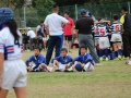 youngwave_kitakyusyu_rugby_school_kasugahai2016123.JPG