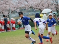 youngwave_kitakyusyu_rugby_school_kasugahai2016141.JPG