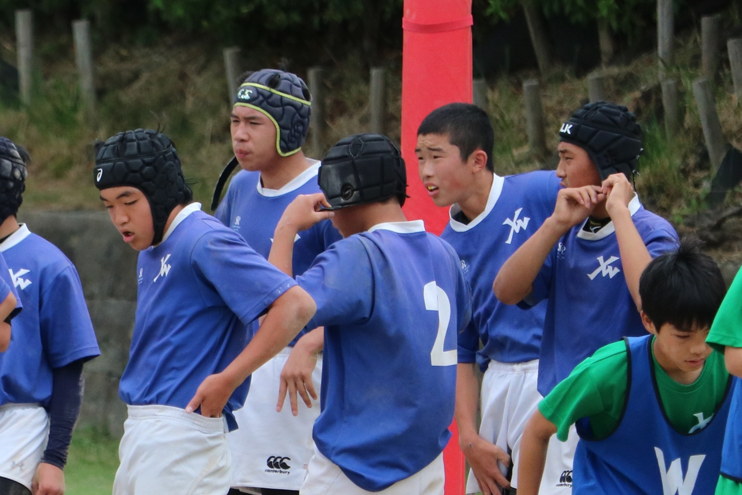 youngwave_2018033