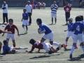 福岡県ラグビー大会2015_北九州市のラグビースクールヤングウェーブ北九州IMG_5187.JPG
