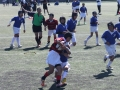 福岡県ラグビー大会2015_北九州市のラグビースクールヤングウェーブ北九州IMG_5189.JPG