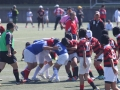 福岡県ラグビー大会2015_北九州市のラグビースクールヤングウェーブ北九州IMG_5248.JPG