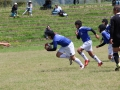 youngwave_kitakyusyu_rugby_school_chikuhokouryu2016035.JPG