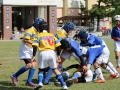 youngwave_kitakyusyu_rugby_school_chikuhokouryu2016118.JPG