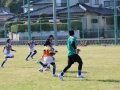 youngwave_kitakyusyu_rugby_school_chikuhokouryu2016165.JPG