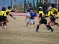 youngwave_kitakyusyu_rugby_school_yamaguchi_kouryu_2016049.JPG