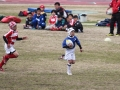 youngwave_kitakyusyu_rugby_school_yamaguchi_kouryu_2016070.JPG