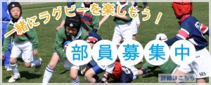 部員募集3_ヤングウェーブ北九州_福岡県北九州市ラグビースクール_ラグビーチーム