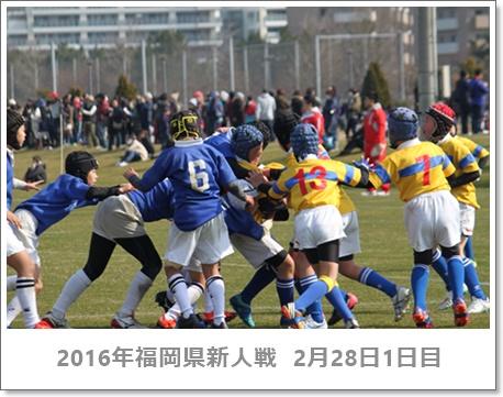 ミニラグビー福岡県新人戦2016_ヤングウェーブ北九州_北九州市の少年少女ラグビースクール