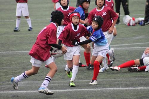 平成29年度福岡県小学生ラグビーフットボール大会